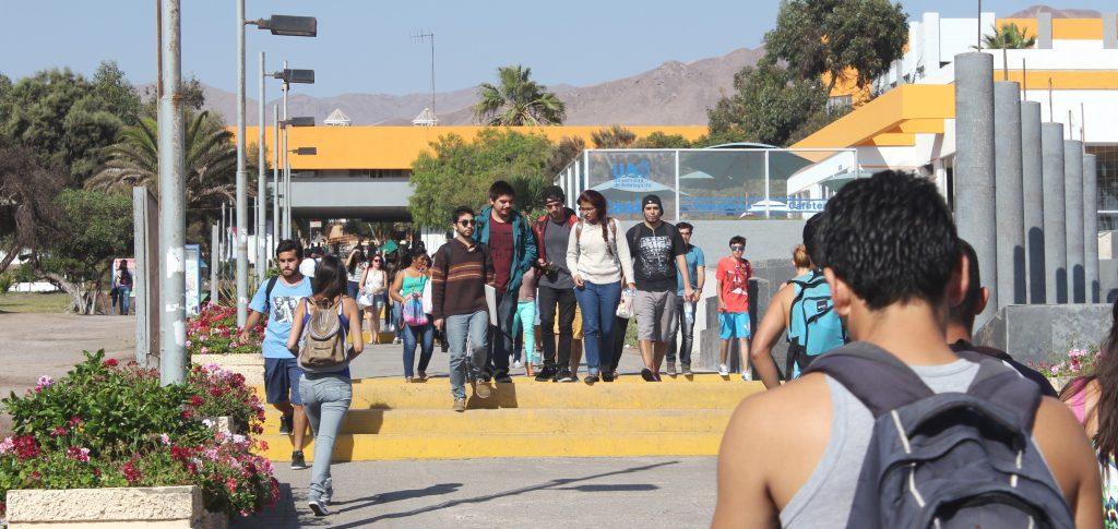 Universidad de Antofagasta iniciará primer semestre 2020 a través de plataforma online