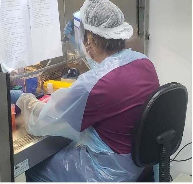 Laboratorio de Virología Molecular de la Universidad de Antofagasta inicia análisis de exámenes PCR