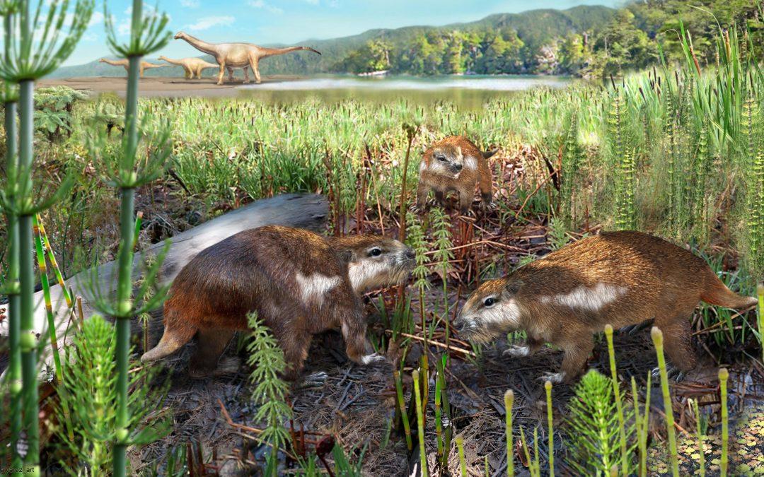 Científicos descubren al primer mamífero chileno de la era de los dinosaurios