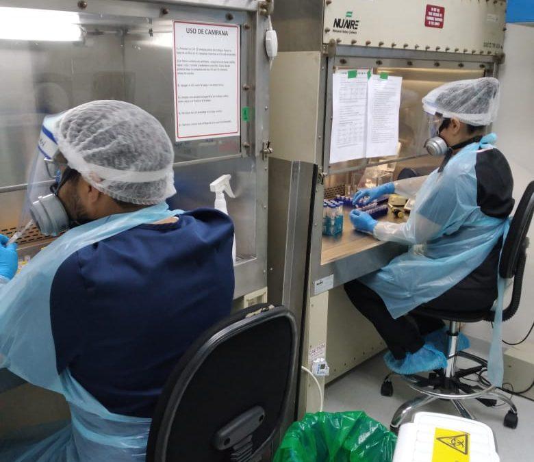 Laboratorio de Virología Molecular de la U. de Antofagasta ha analizado 4.400 muestras PCR a menos de dos meses de iniciar las pruebas