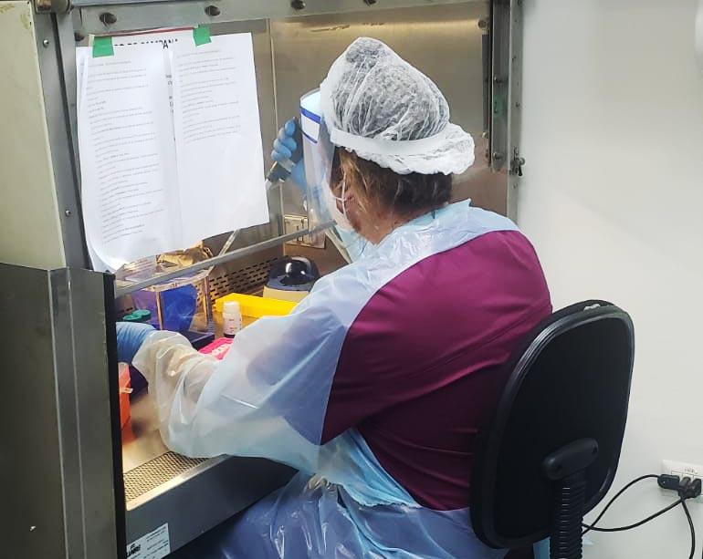 Laboratorio de Virología Molecular de la U. de Antofagasta supera las 13 mil muestras de exámenes por PCR en cuatro meses de trabajo