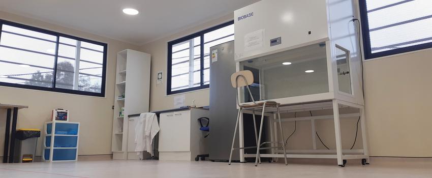 Región de Coquimbo aumenta capacidad para procesar muestras COVID-19 con la entrada en funcionamiento del Laboratorio ULS