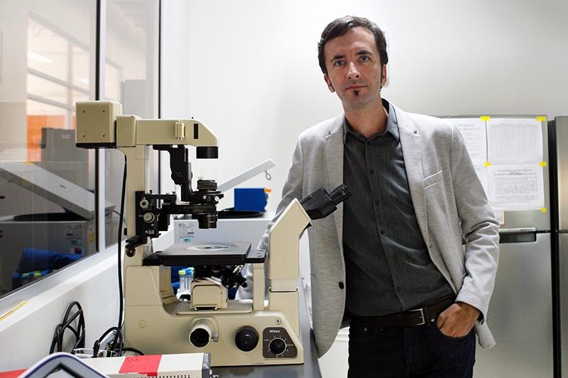 Estados Unidos da luz verde a pruebas de inédita terapia para ELA basada en estudio U. de Chile