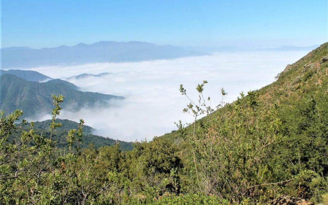 UPLA y comunidad de La Campana-Peñuelas se vinculan para protegerla de actividades productivas