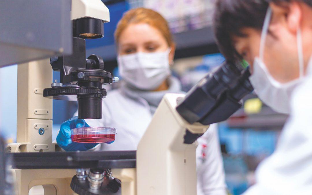 Universidad de Talca logra histórica tasa de adjudicación de proyectos Fondecyt Regular